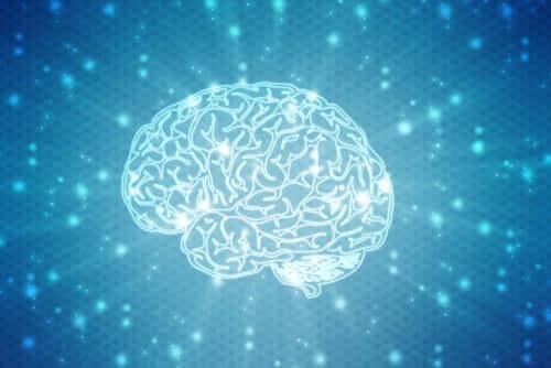 figur af hjernen