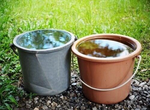 Koldt vand blev brugt i eksperimentet om selvbedrag