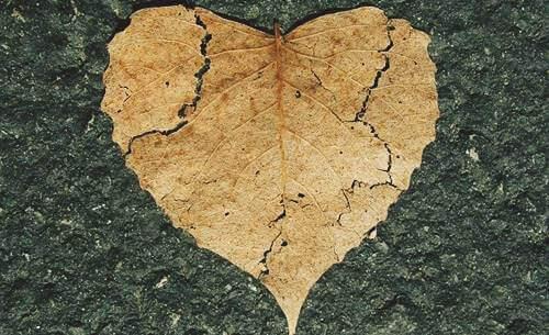 Emotionel selvskade: Hvad er det?