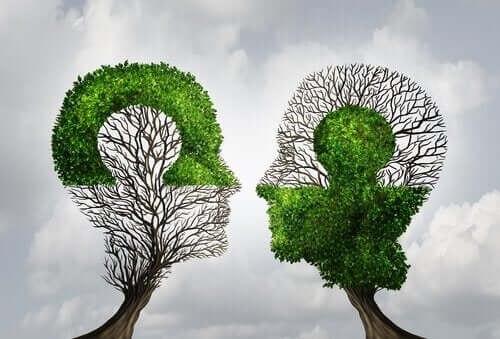Træer, der ligner ansigter