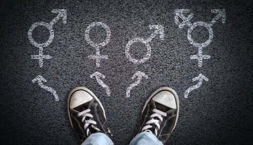 Kønsdysfori: Det bør du vide