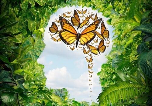 Sommerfugle i en busk formet som et hoved illustrerer, at man er rolig midt i kaos