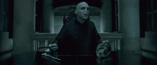 Voldemorts liv minder meget om Harrys