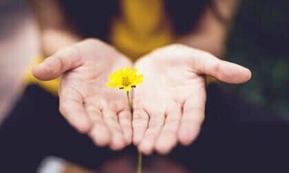 Hvad er posttraumatisk vækst?