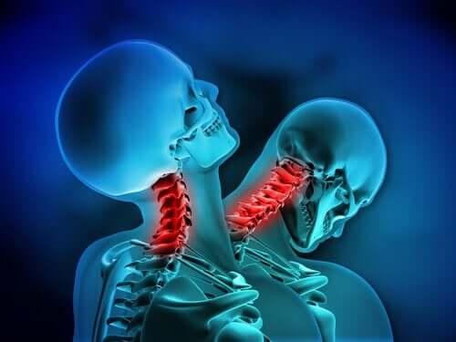 Animation af skelet