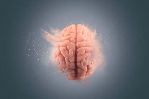 Hjernen er et kompliceret organ