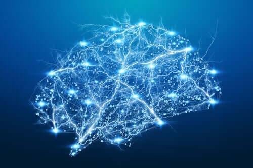 hjerne med lys i