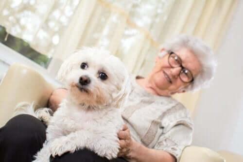 Ældre kvinde med hund på sit skød
