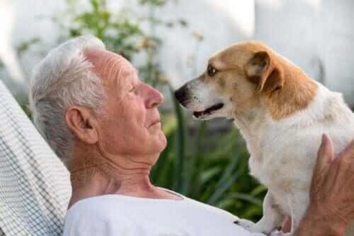 Ældre mand med hund