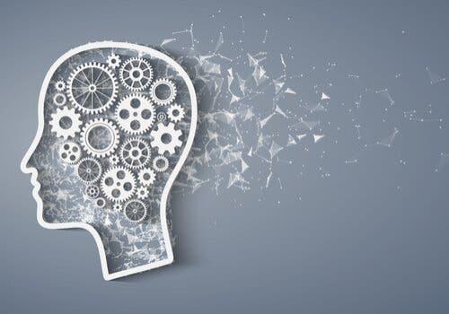 Metakognition: Komponenter og karaktertræk