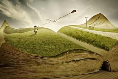 Dreng med en drage på et græstæppe i en bog