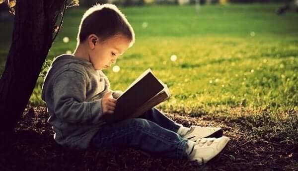 Lille dreng læser i en bog