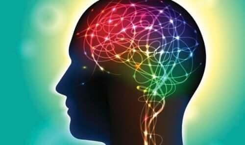 Lys i hjerne illustrerer evnen til at forme hjernen
