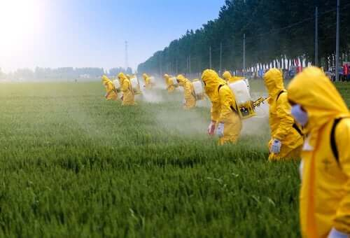 Pesticider har indvirkning på hjernen