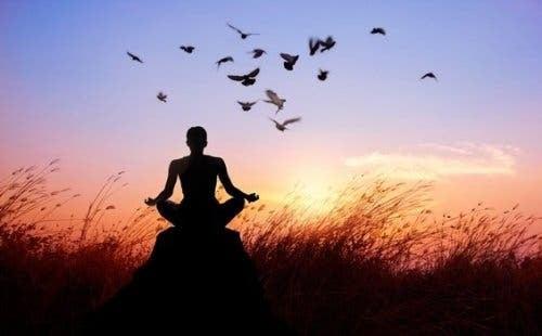 Mand, der mediterer på sten