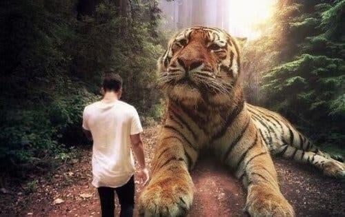 Mand foran stor tiger