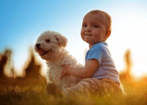 En baby med en hund