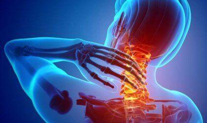 Nociceptorer: Alt om smertereceptorer