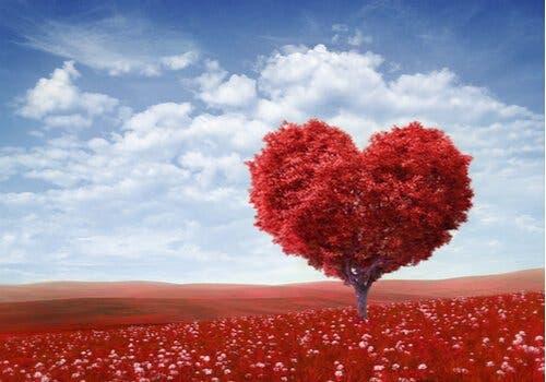 Valentinsdag: Hvem var den rigtige St. Valentine?
