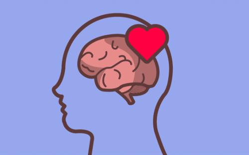En illustration af forbindelsen mellem hjerte og hjerne
