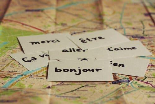 Kort med ord på forskellige sprog ligger på landekort