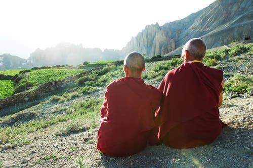 To munke, der nyder udsigt