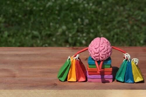 Neurovidenskab og forbrugerens hjerne