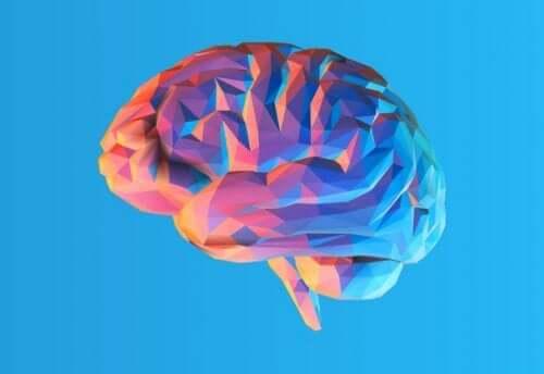 Farverig animation af hjerne