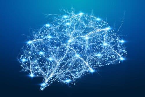 Illustration af oplyst hjerne illustrerer intelligens