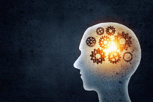 Hvad får vi ud af at træne hukommelsen?