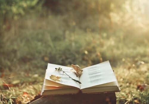 Magien ved poesi, og hvordan det kan lindre smerte