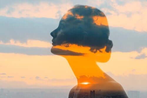 Kvindes silhuet foran himmel