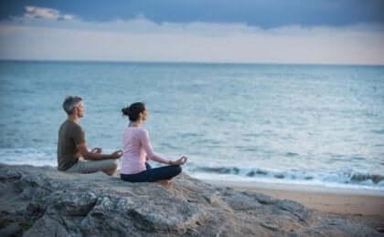 Afgørende elementer i zen til at gøre det, du har lyst til