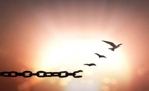 Fugle, der bryder fri fra kæde