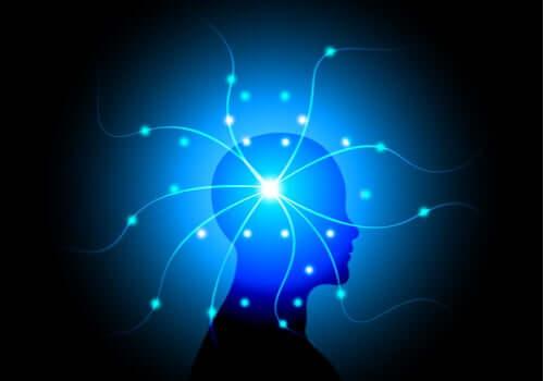 Lys fra persons hjerne symboliserer bevidsthed