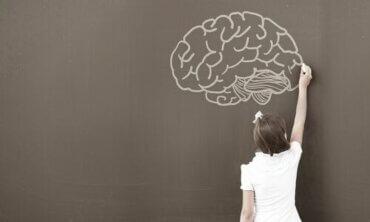Hvorfor anvender psykologer WISC testen?