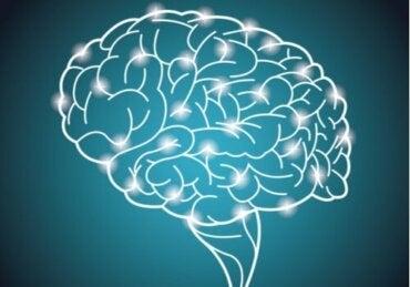 Verdens største eksperiment om intelligens