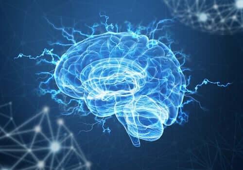Neuroplasticitet og posttraumatisk stress: Kan hjernen komme over traumer?