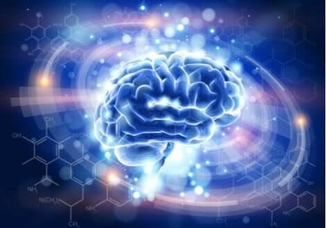 Posttraumatisk stress illustreres af en traumatiseret hjerne