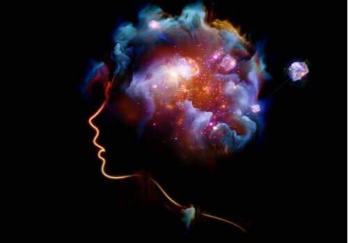 Univers i hjerne
