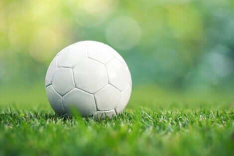Hvid foldbold på græs