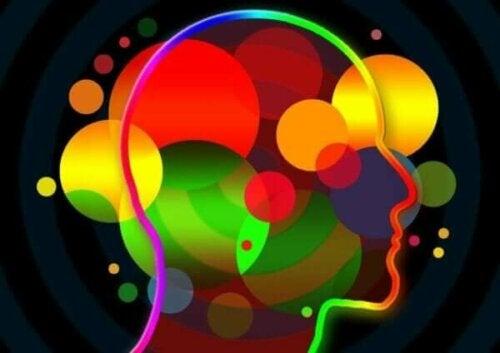 Hvad er socio-emotionelle færdigheder?