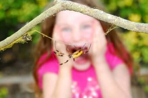 Et barn, der er bange for en edderkop