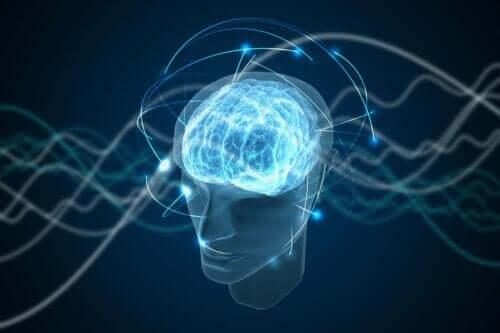 Hjerne med blå lys