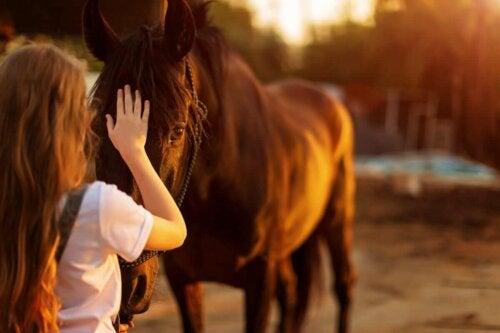 Pige, der aer en hest