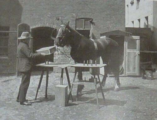 Sort-hvid-billede af mand og hest