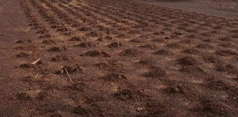 En øde mark