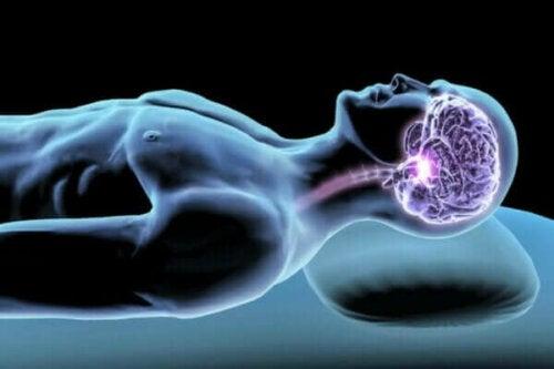 Søvnhormoner: Mæglere for en god nats søvn