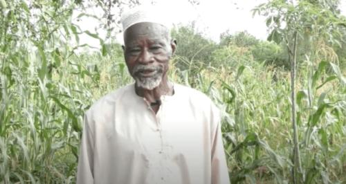 Yacouba Sawadogo - Manden, der overvandt Sahara