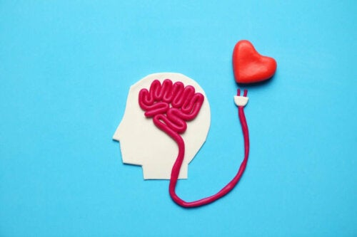 Forbindelse mellem hjerne og hjerte